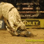 Why They Have Sports Medicine Team in the PBR