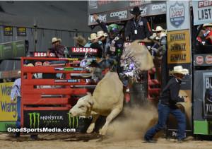 Last Cowboy Standing in las vegas