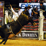 The PBR and BlueDEF Bucking Madness search for the next bull riding star continues